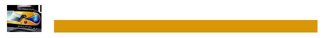 Professional Simulation Logo